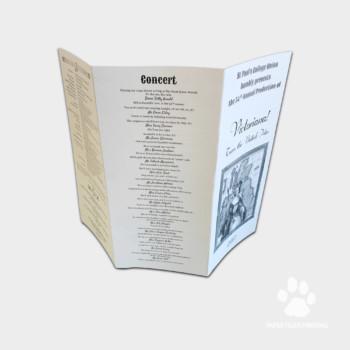 A3, A4, A5, A6 Corporate Brochures