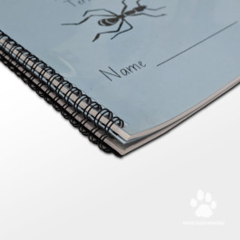 Comb, Wire and Spiral binding